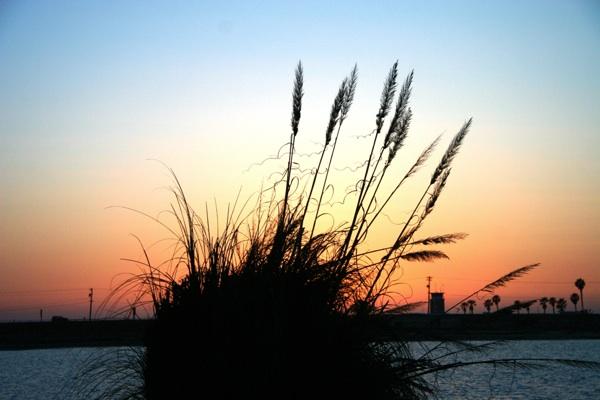 May 2014 Beautiful Sunset at Coronado Keys