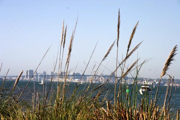 View of Coronado Bridge from the Coronado Keys