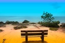 Bench at la jolla Torrey Pines State Beach