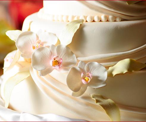 White Wedding Cake Photo taken in Gaslamp San Diego