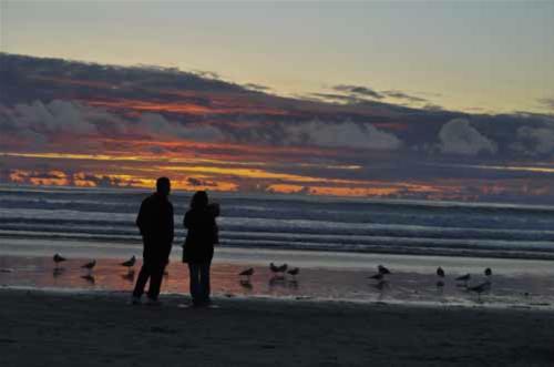 people La Jolla Beach